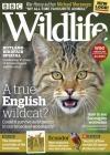 BBC Wildlife 5/2018