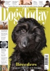 Dogs Today 1/2019