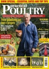Practical Poultry 1/2019