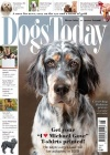 Dogs Today 2/2019