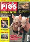 Practical Pigs 1/2019