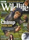 BBC Wildlife 1/2020