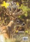Texas Parks & Wildlife 2/2020